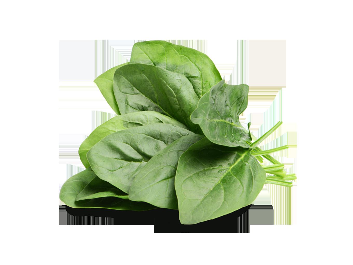 Spinaci in foglie bio